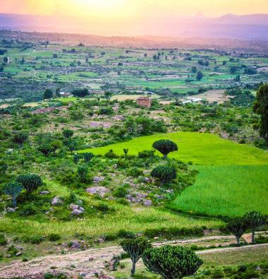 Etiopia2012set_500GheraltaLodgeHawzien