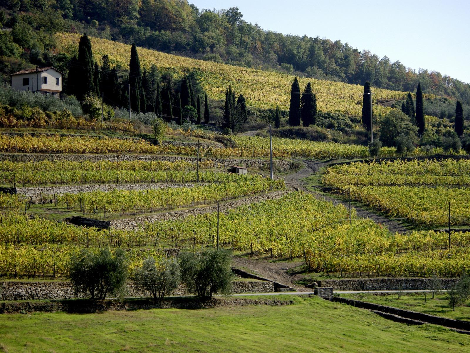 I sistemi terrazzati in Toscana