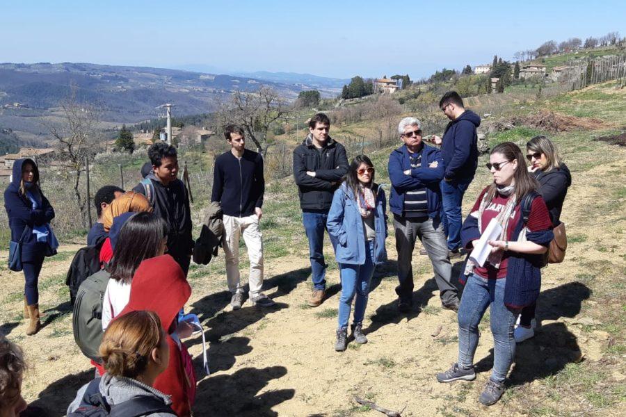 Visita alle vigne e i muri a secco restaurati di Lamole, Toscana